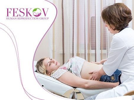 Что нужно знать о переносе эмбрионов - Центр суррогатного материнства профессора Феськова А.М.